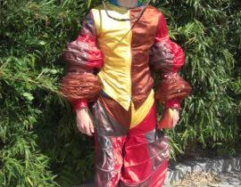 Kostuum nar 2