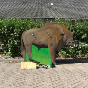 bizonschieten