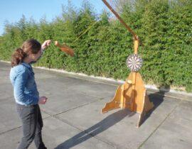 prikvogel hout (4)