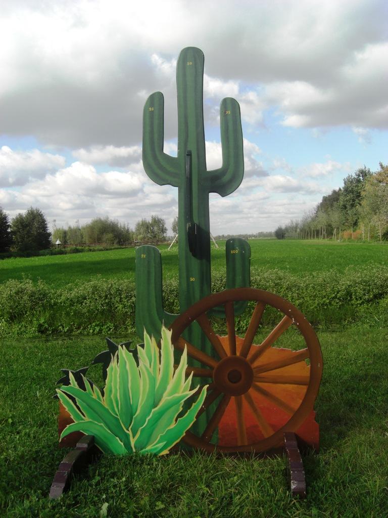 Cactus Western